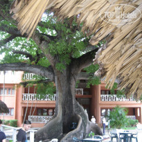 Фото отеля BelleVue Dominican Bay 3* Территория