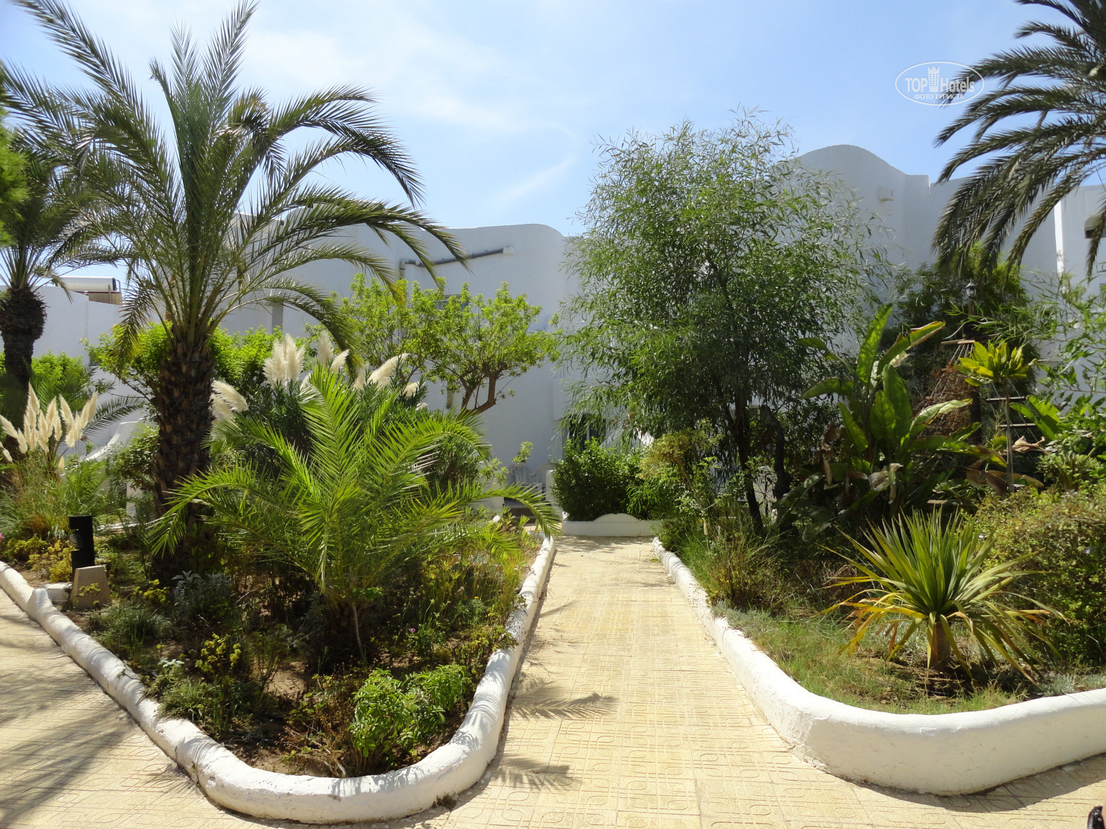 All photos: Hotel territory отеля Fiesta Beach 4*. Rating of world ...
