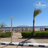 Фото отеля Coral Beach Resort Montazah 4*