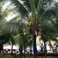 Dessole Beach Resort - Mui Ne 4* Вид с балкона - Фото отеля