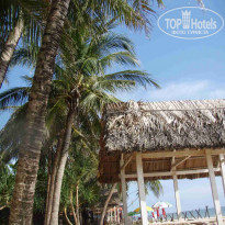 Фото отеля Tropicana Resort 3* Пляж  у отеля