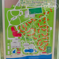 Papillon zeugma map