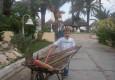 недорогой отдых в Тунисе цена