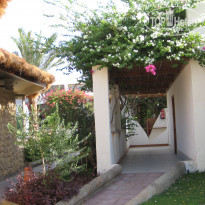 Фото отеля Swiss Inn Golden Beach Dahab 4*