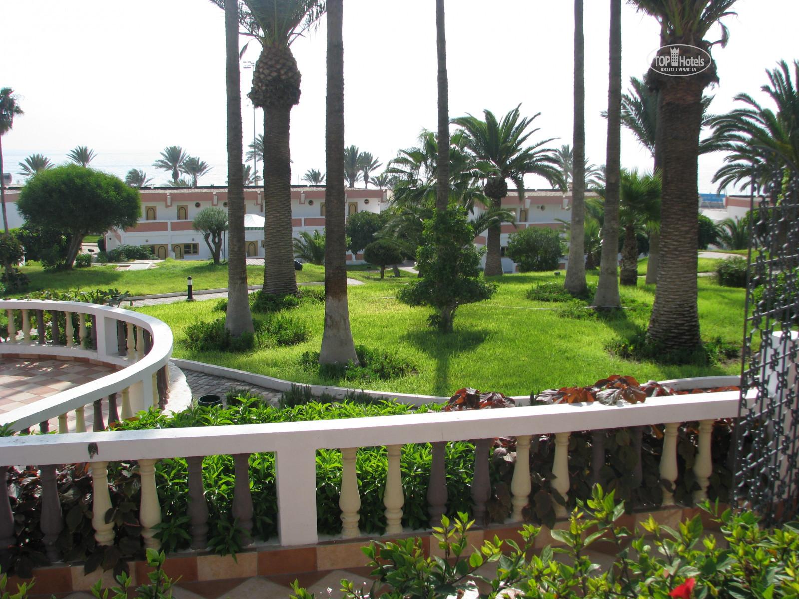 Фото турагентов отеля Al Moggar Garden Beach Club 4*. Рейтинг отелей ...