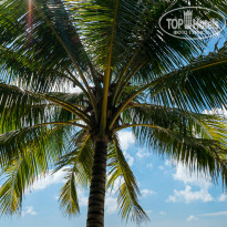Фото отеля The Saigon Phu Quoc Resort 4*