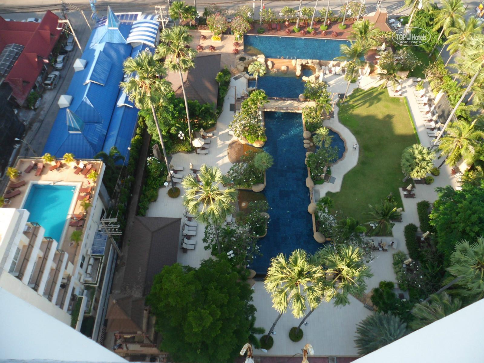а гостиница джомтьен палм бич фото как раз