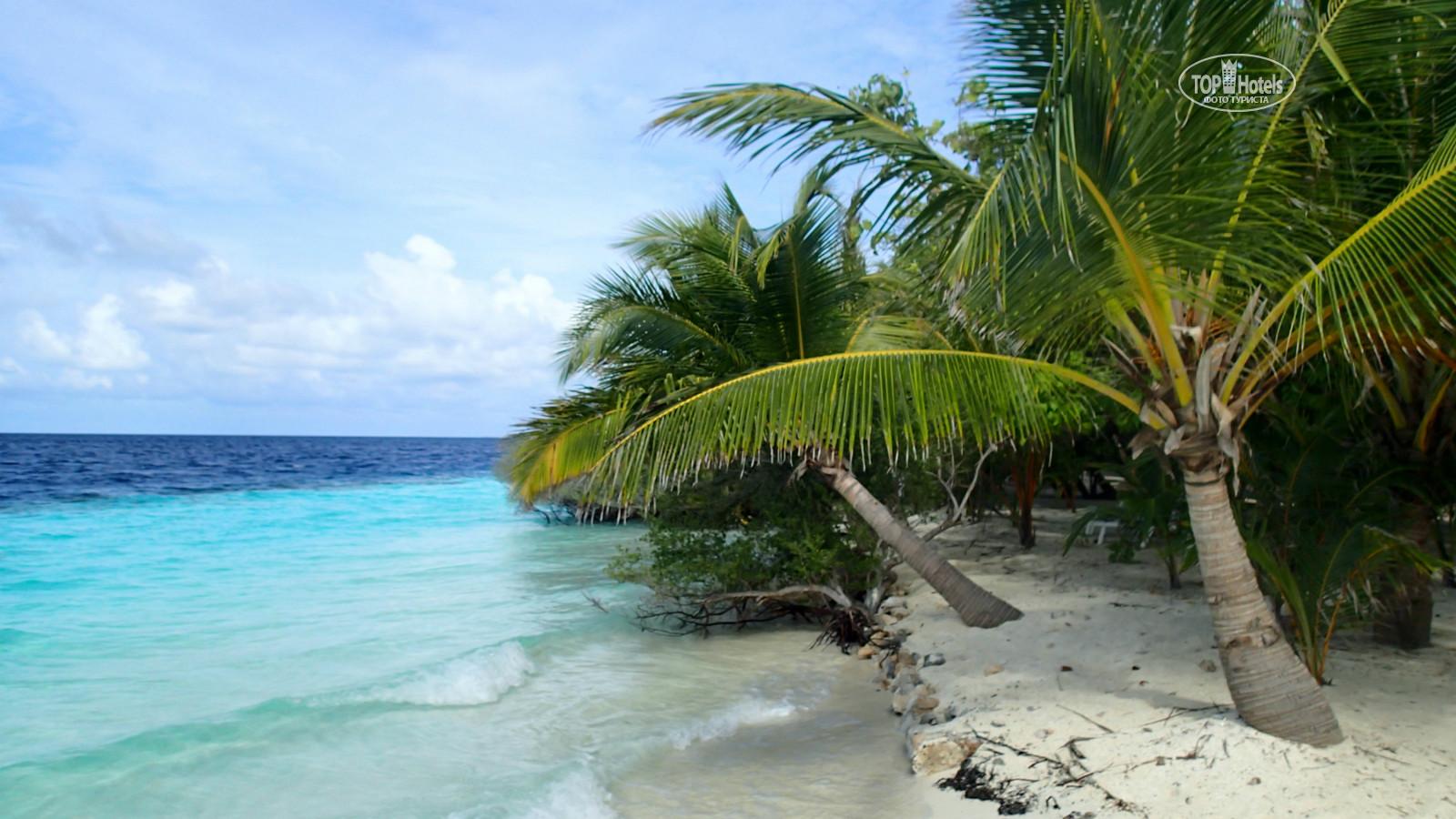 adaaran club rannalhi 4 отзывы Adaaran Club Rannalhi 4* (Ран-нали,Мальдивы) Цены,Отзывы,Туры ...