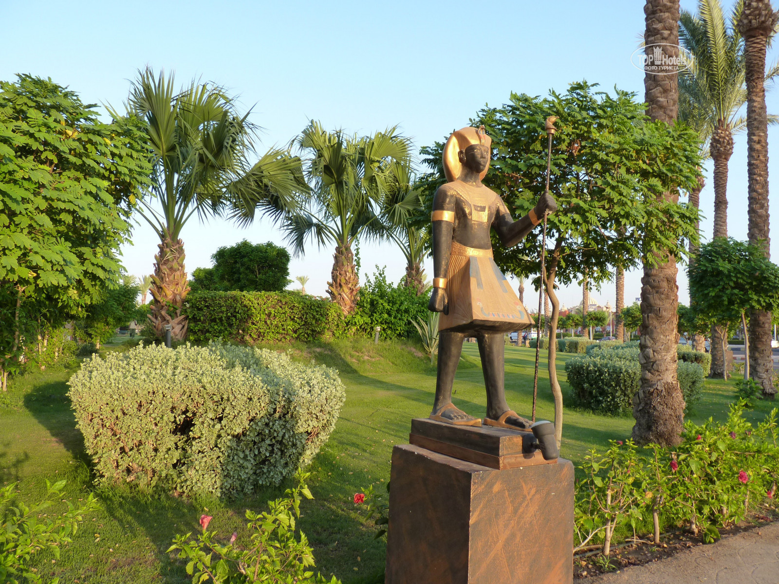All photos отеля Sunrise Select Garden Beach Resort & Spa 5*. Rating ...